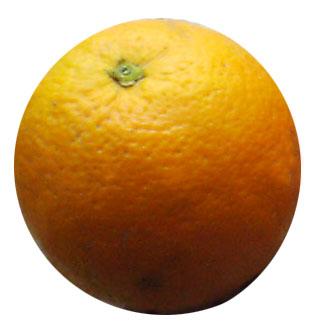 el rey pide Naranja